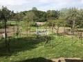 024 záhrada