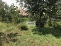 043 záhrada