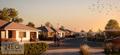 cam_street_sunrise_WEB
